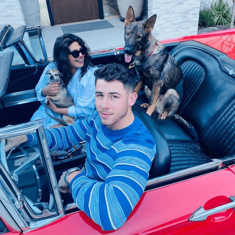 Nick Priyanka Jonas Family